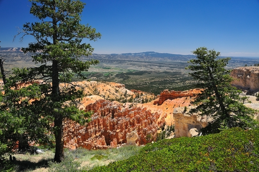 Bryce Canyon  [no. 413]