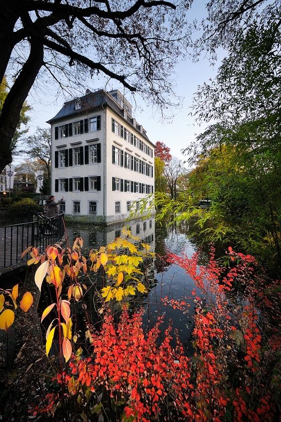 Herbst im Holzhausenpark [no. 1424]