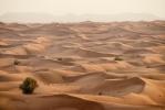 Desert [no. 1589]