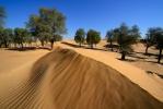 Dubai Desert [no. 1779]